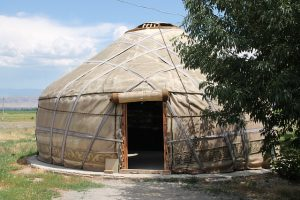yurt in yard